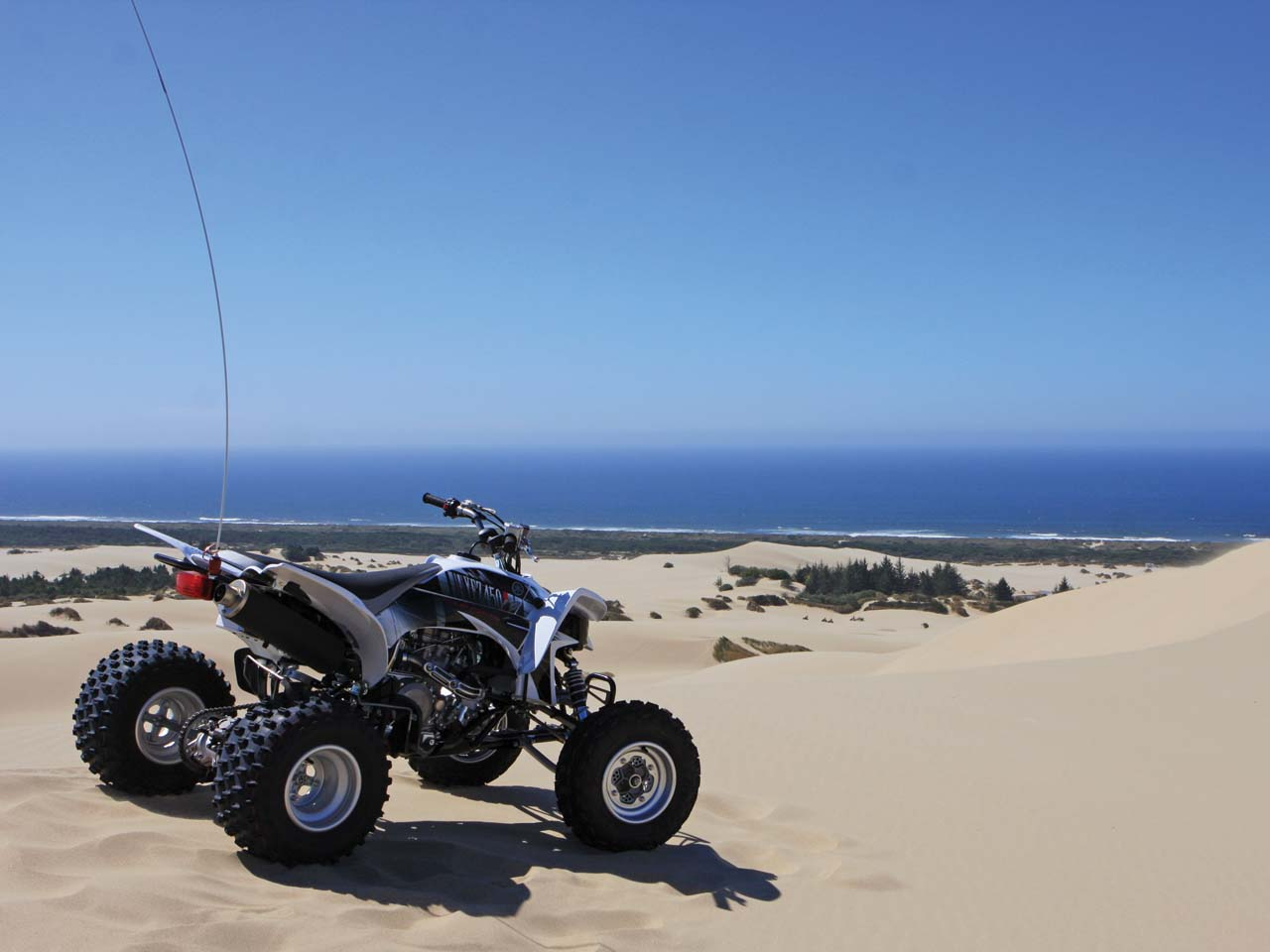 PowersportsMax  Dirt Bike Dirt Bikes ATV ATVs Moped