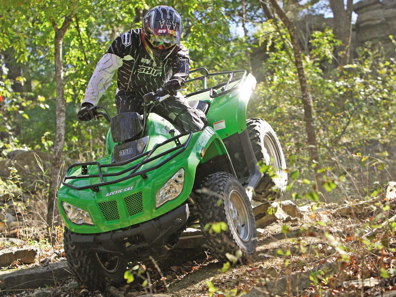 nursing supervisor interview questions exotic pet animal stock 2012 arctic cat atvs first ride review arctic cat 350 arctic