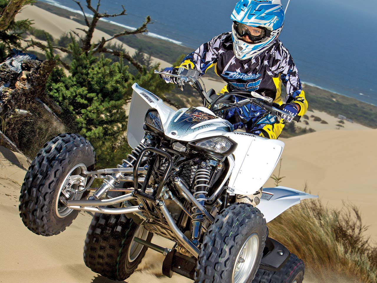 Best sport atv playmate of the year atv illustrated for What year is my yamaha atv