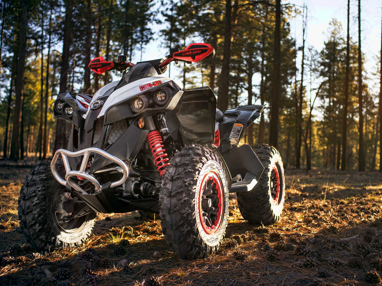 2016 Can Am Renegade Family Atv Illustrated