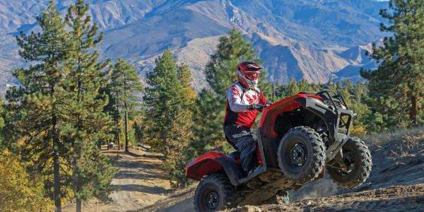 2015.honda-fourtrax-rancher4x4.red.right.riding.up-hill.wide.jpg