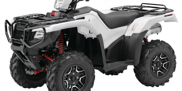 2015.honda.fourtrax-foreman-rubicon-deluxe.white.front-left.studio.jpg