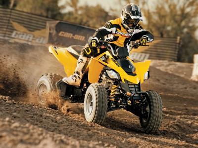 2010.can-am.ds250.yellow.front-right.riding.on-track.jpg