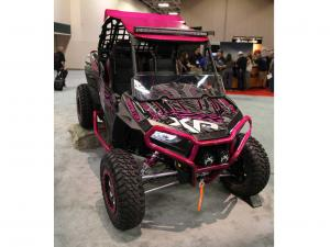 2014.polaris.rzr_.special-edition.breast-cancer-pink.front_.parked.in-side.JPG