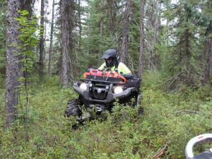 location.2011.atv-nation.atv-riding-in-woods.jpg