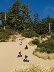 location.2011.atvs_.riding.by-sand-dunes.oregon-winchester.jpg