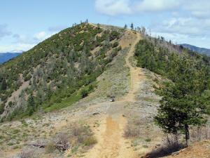 location.2012.california-chappie-shasta.hill.jpg