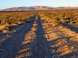 location.2014.american-adventure.nevada.desert-trail.JPG
