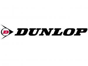 logo.2013.dunlop-tires.jpg