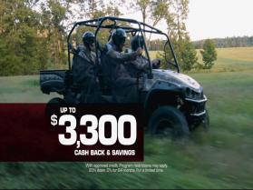 Real XTV Utility Vehicle Savings