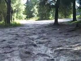 BEGINNER RIDER / DIRTBIKE ATV TRAINING AREA ~ CROOMATVRENTAL.COM ~ BROOKSVILLE ~ FLORIDA